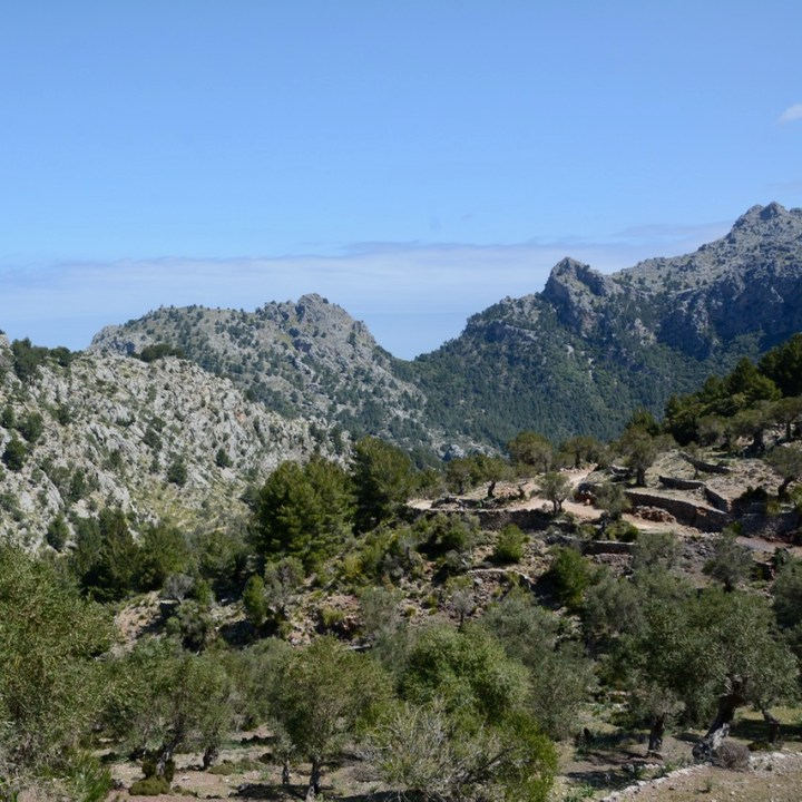 travel with kids children soller mallorca spain hiking cala tuent mountains