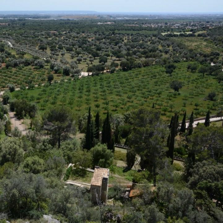 travel with kids children mallorca spain raixa estate view