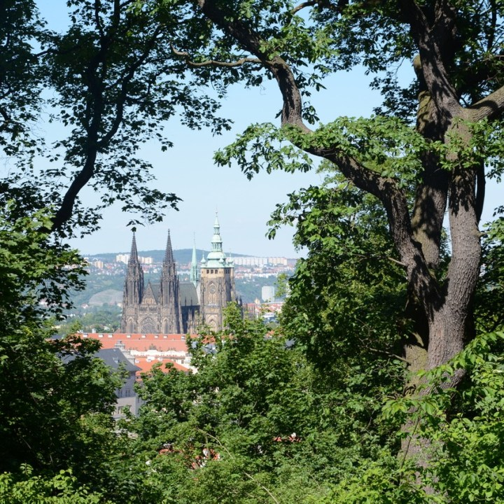 travel with kids prague cathedral view