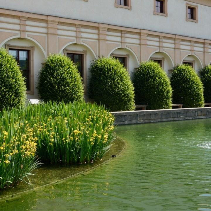 travel with kids prague wallenstein palace duck