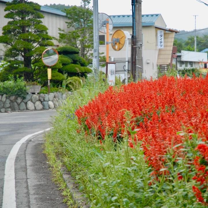 travel with kids japan fujiyoshida hiking roadside