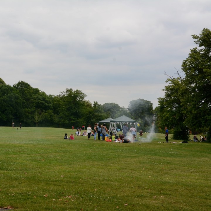 crystal palace park with kids barbeque