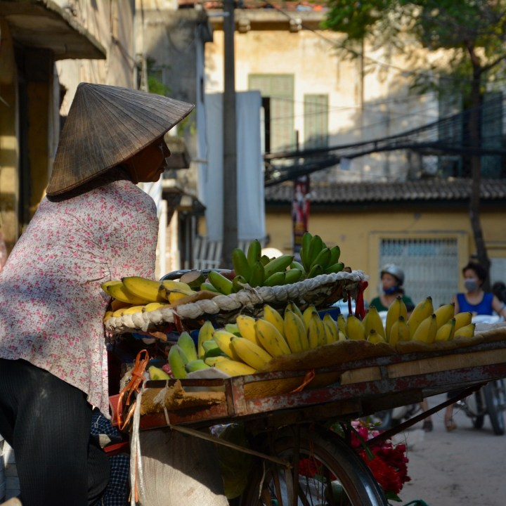travel with kids vietnam hanoi banana lady