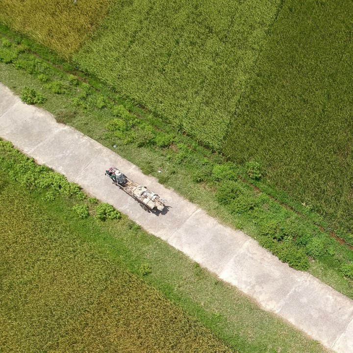 travel with kids vietnam hoi an farmer