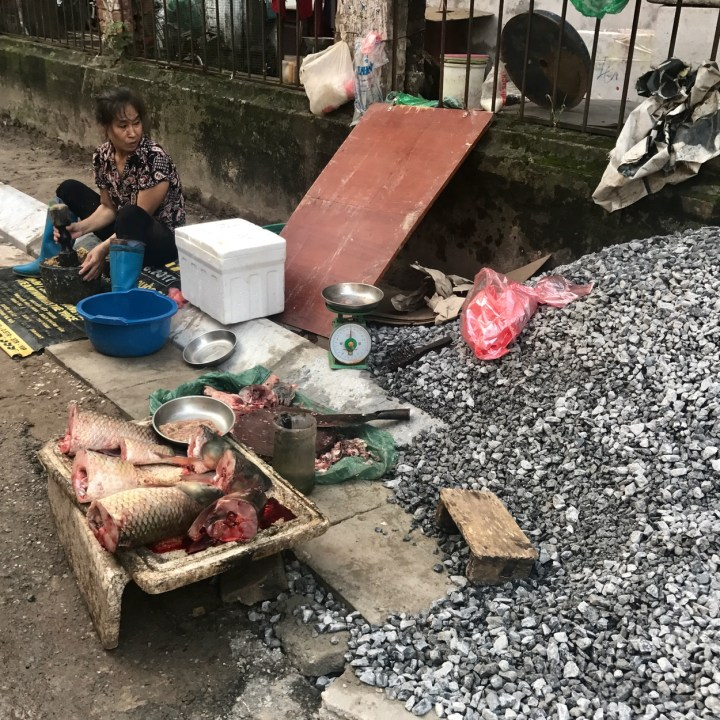 travel with kids vietnam hanoi fish lady