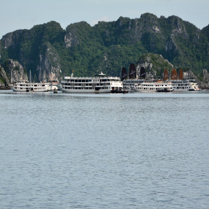 vietnam with kids ha long bay cruise boats