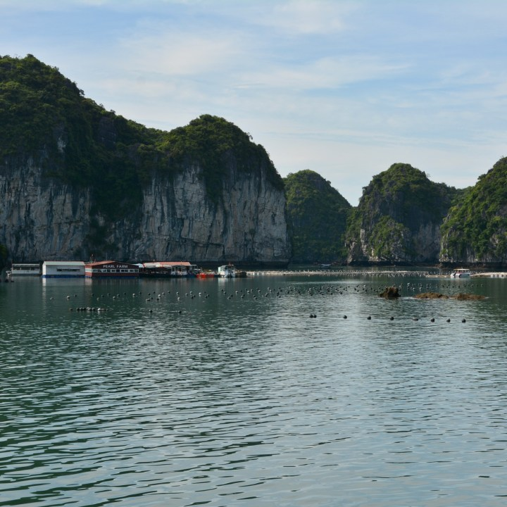 vietnam with kids ha long bay pearl farm