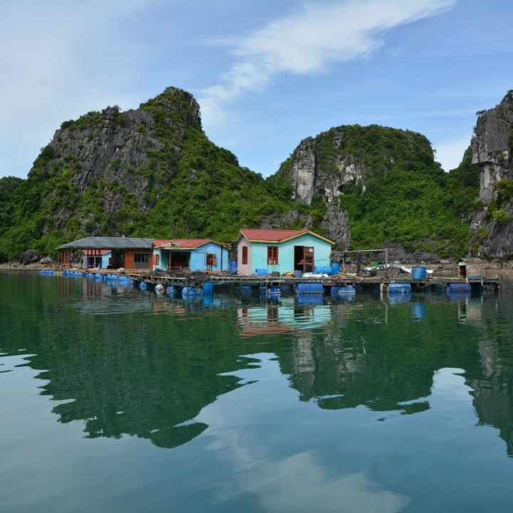 vietnam with kids ha long bay floating village