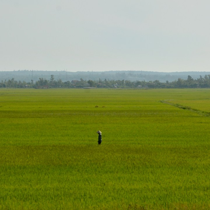 vietnam with kids hanoi train rice farmer