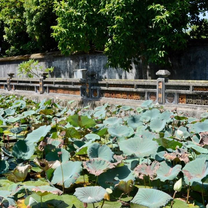 vietnam travel with kids hue citadel lotus pond