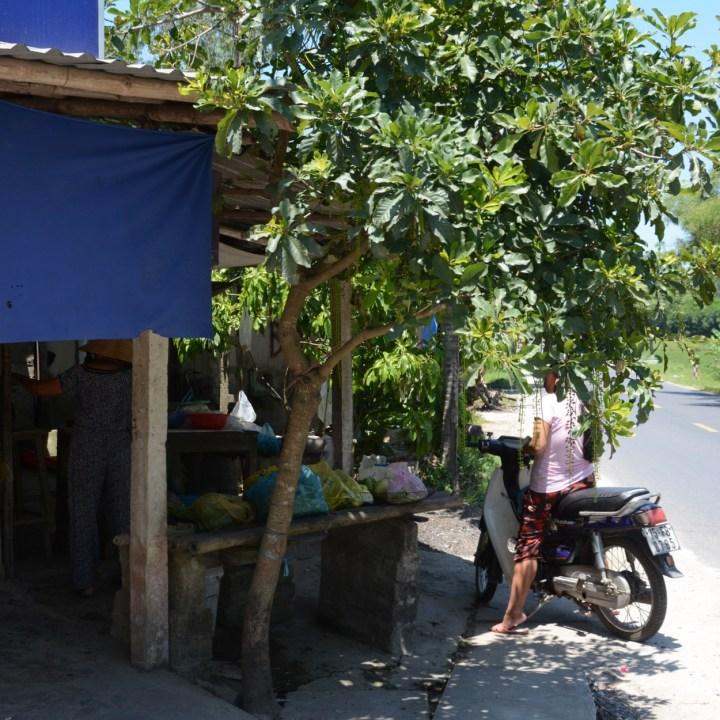 vietnam with kids hue duc son pagoda street stall