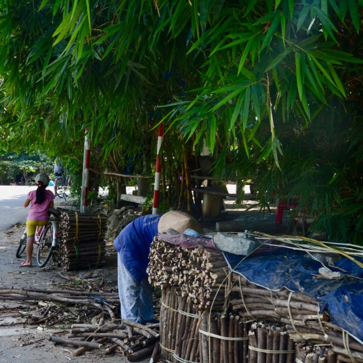vietnam with kids hue wood collector