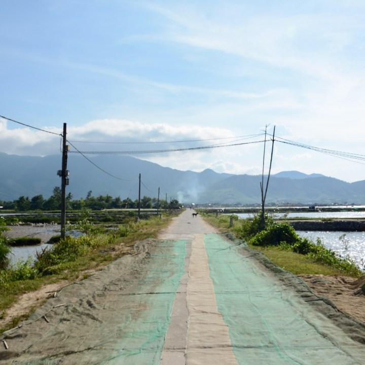 vietnam with kids cai lau lagoon fisher nets