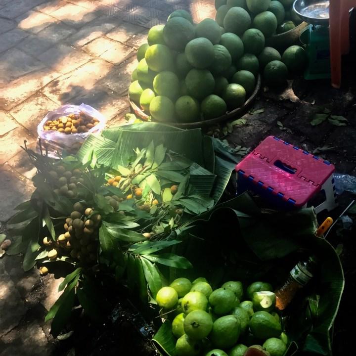 vietnam with kids hue market fruit