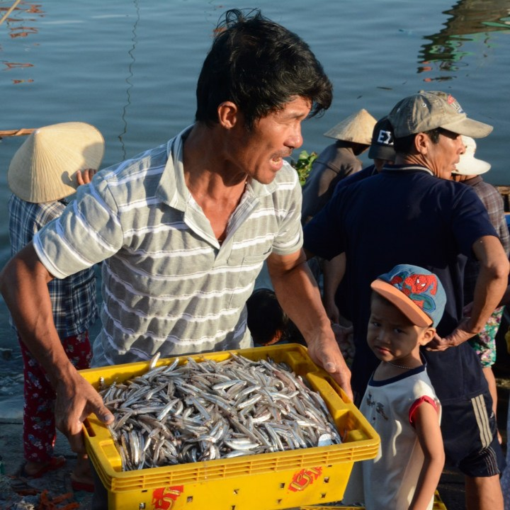 photo tour vietnam hoi an big catch
