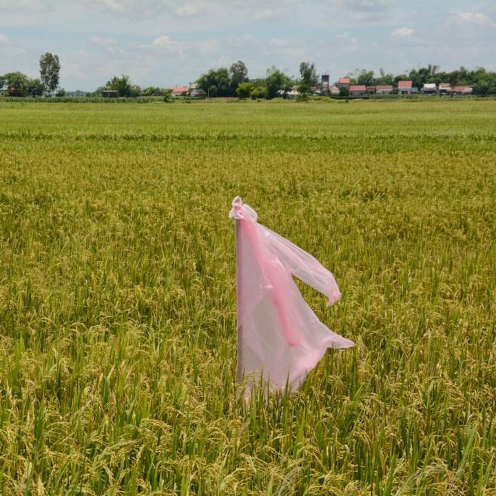 vietnam travel with kids hoi an rural bike ride scarecrow