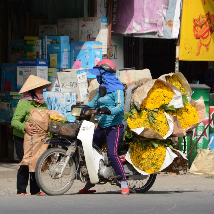 vietnam travel with kids hoi an rural bike ride flower