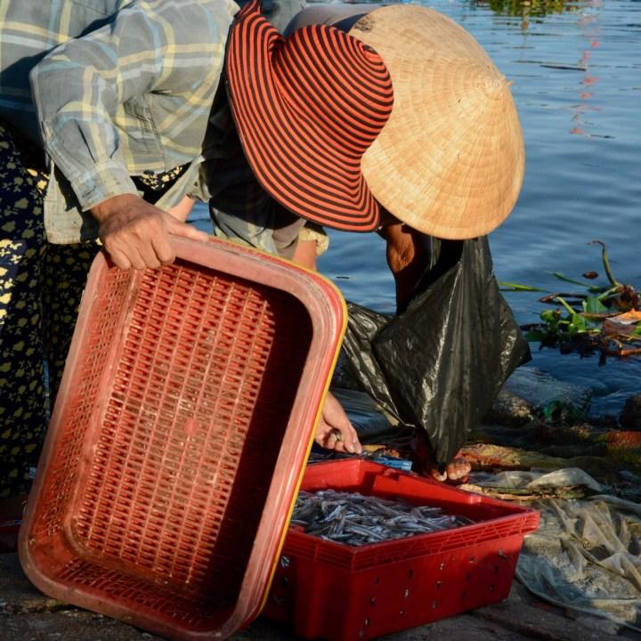 photo tour vietnam hoi an inspection