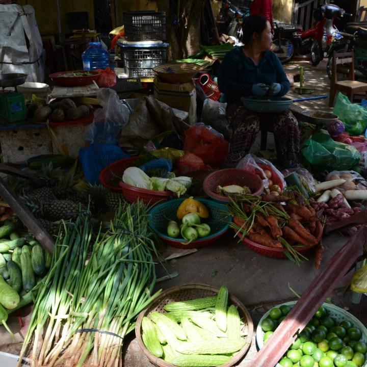 vietnam with kids hoi an cooking class market stall