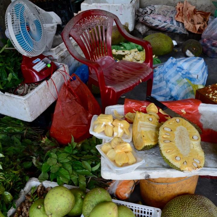 vietnam with kids hoi an cooking class durian
