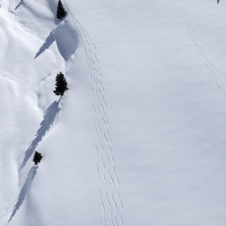 seiser alm skiing with kids tree shadows