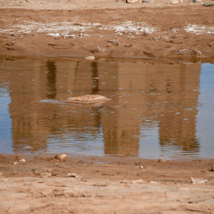 Morocco with kids atlas mountains reflections