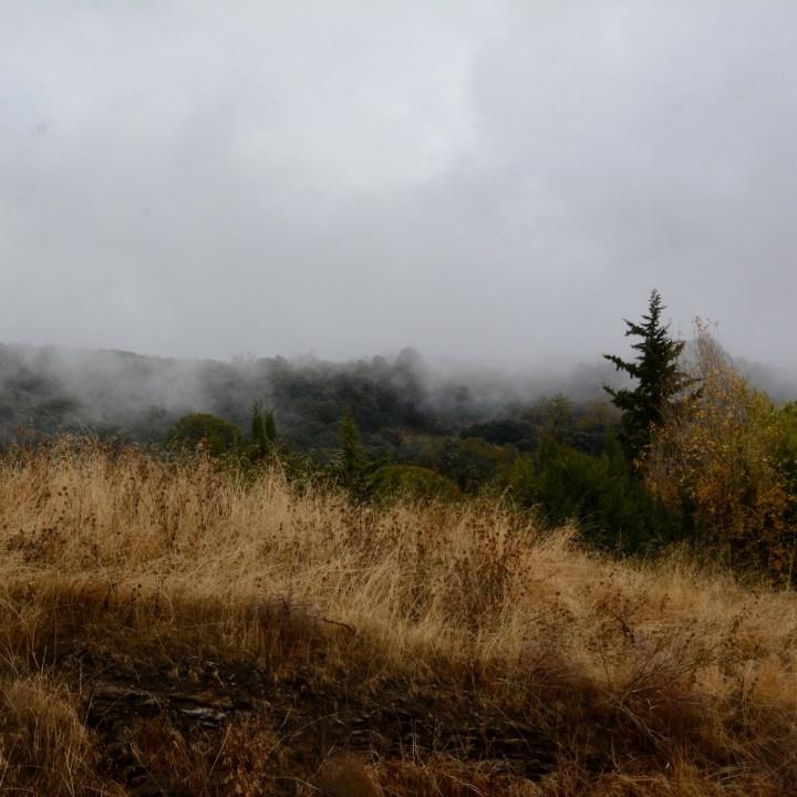 bubion with kids fog hillside