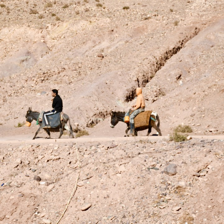 Tifiltoute with kids Morocco donkey riders
