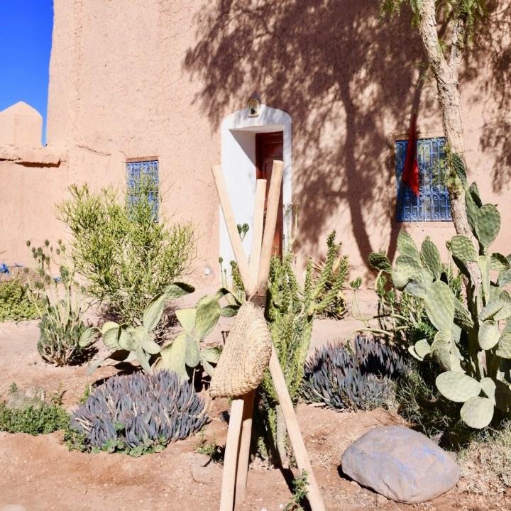 Tifiltoute with kids Morocco cacti garden