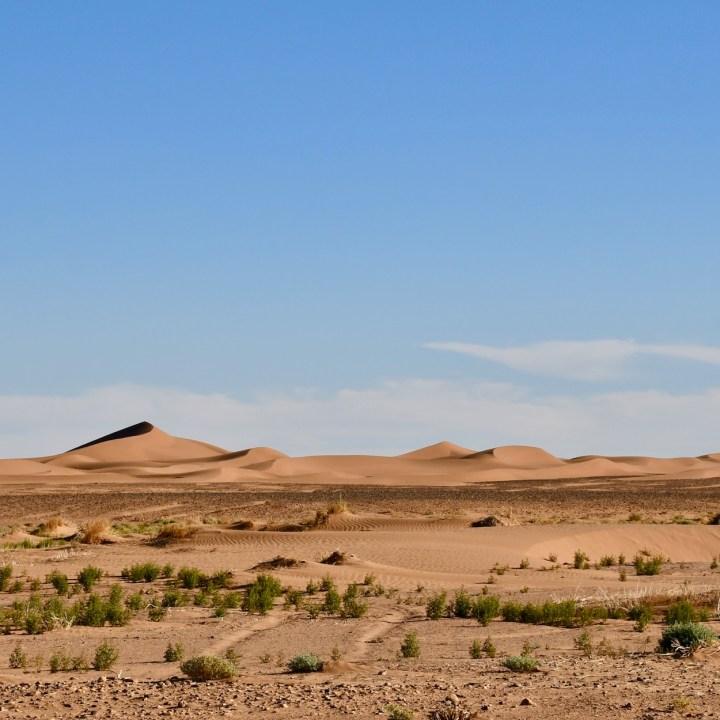 sahara desert erg chigaga with kids