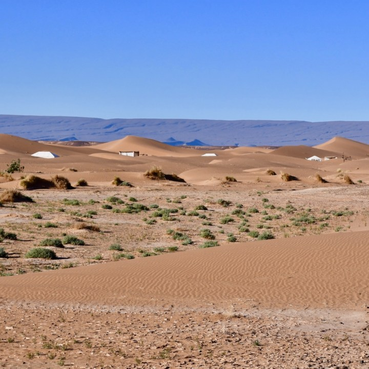 sahara desert erg chigaga with kids la kahena camp