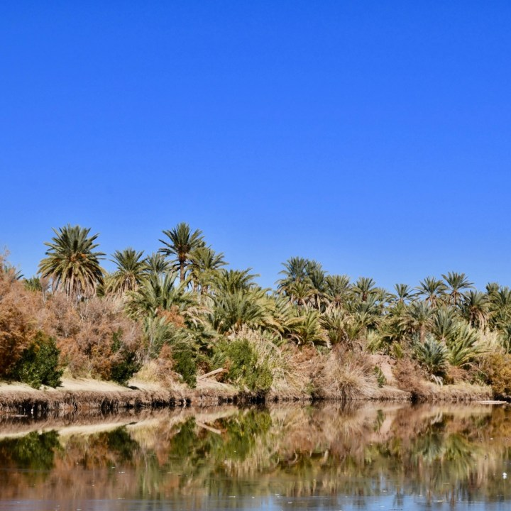 Agdz Morocco with kids Lodge Hara Oasis palmeraie