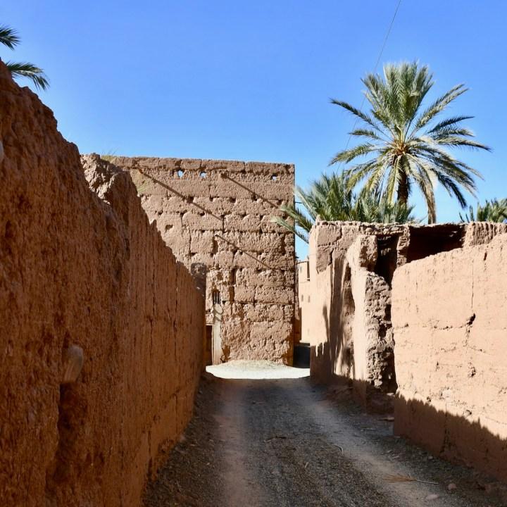 Agdz Morocco with kids Lodge Hara Oasis road