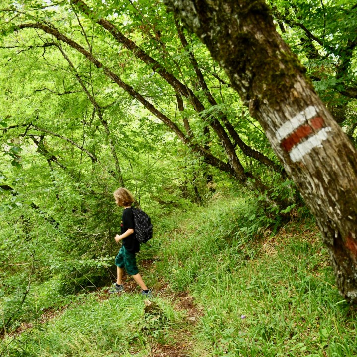 Borjomi with kids adventure trail sign post