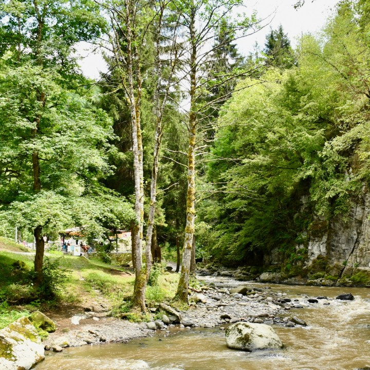 Borjomi with kids adventure trail stream