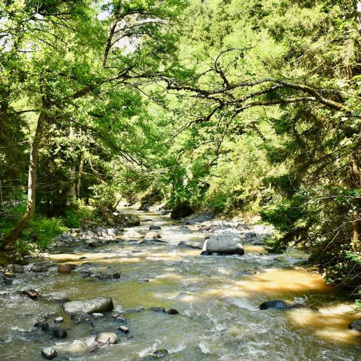 Borjomi with kids adventure trail stream