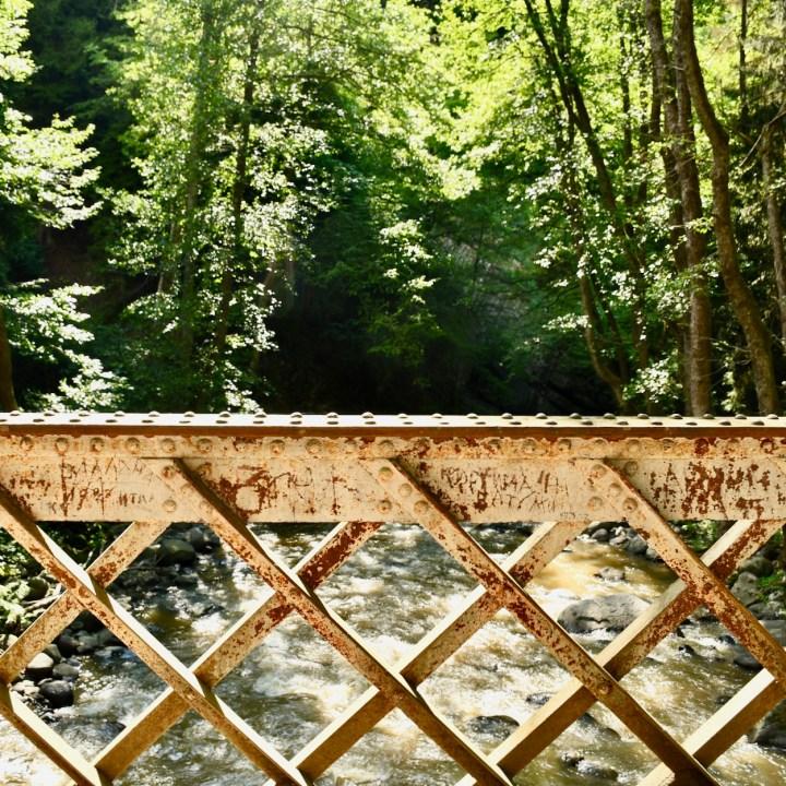 Borjomi with kids adventure trail bridge