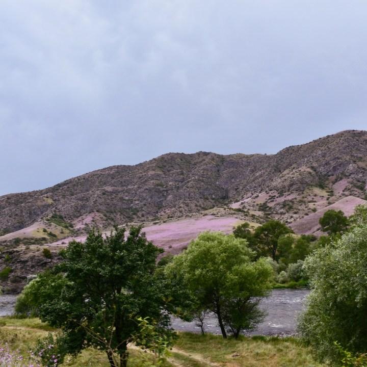 Green Monastery Georgia with kids pink hills
