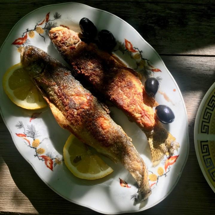 Khertvisi Georgia castle grilled trout