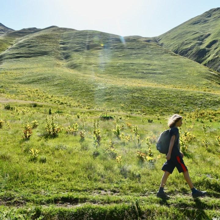 Juta hike return hike