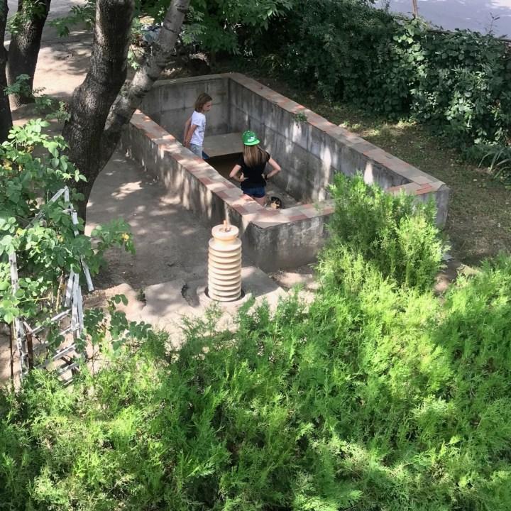 winery Georgia Tbilisi pool
