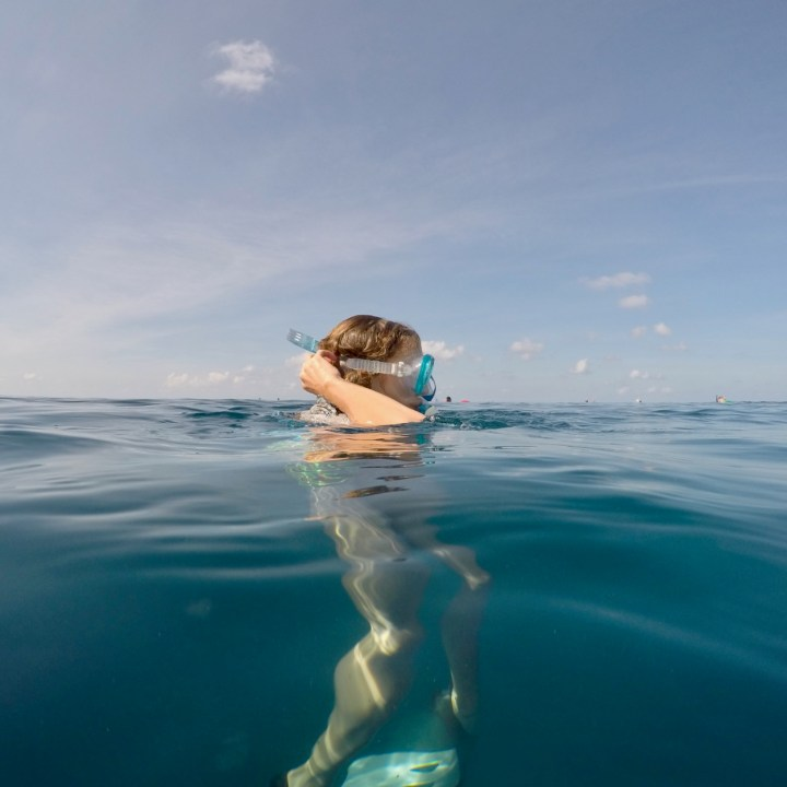 Lux South Ari snorkel trip