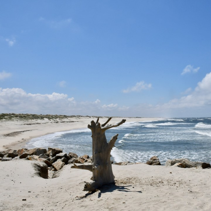 Praia da Vagueira sandy beach