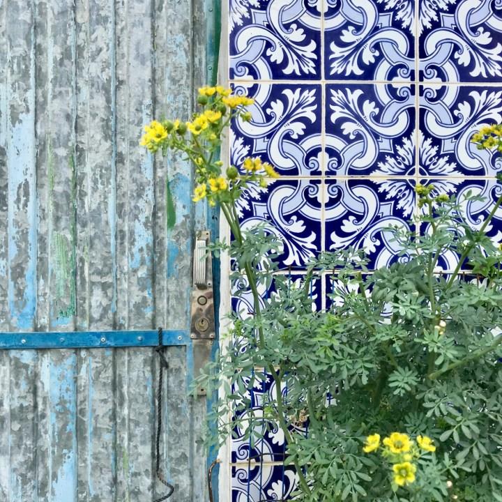 Costa Nova Portugal azulejos detail