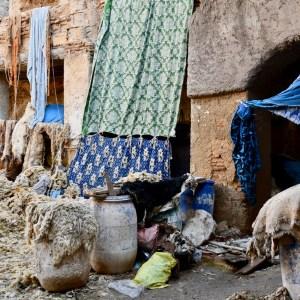 Fez Ain Azliten tannery animal skins