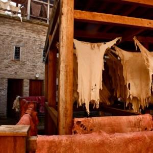 Fez Ain Azliten tannery sdrying skins
