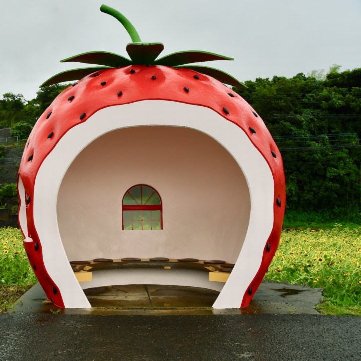 Konagai, Japan | The Kawaii Fruit Shaped Bus Stops Along Route 207 Near Isahaya