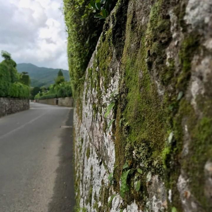 Chiran samurai residence wall