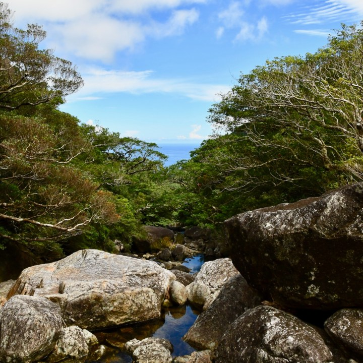 Yakushima, Japan |  The Onoaida Hiking Trail to the Serene Janokuchi Waterfalls