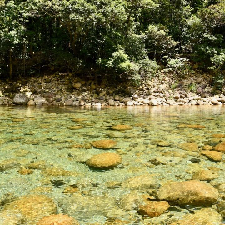 Yakushima Botanical Garden Miyanoura River